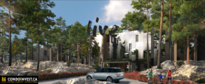 outside view of tall pine trees bracketing The Residences at Muskoka Bay