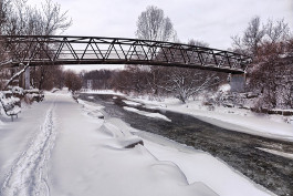 The Culham Trail bridge over the Credit River in Erindale Park, Mississauga.